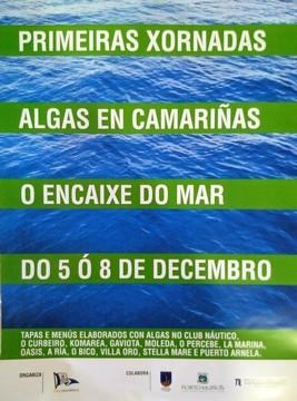 cartel jornadas algas camariñas