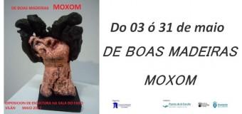 """Exposición de escultura """" De boas madeiras"""""""