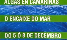I Jornada «Algas en Camariñas – O Encaixe do Mar»