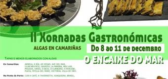 II Jornada «Algas en Camariñas – O Encaixe do Mar»